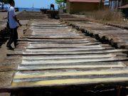 impor garam indonesia