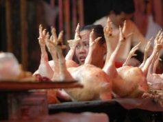 harga daging ayam hari ini menjelang lebaran