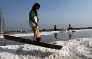 pemerintah indonesia ajukan rencana impor garam